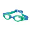 Jelly Goggles Blue Green