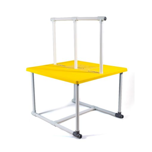 FINIS Swim Teaching Platform